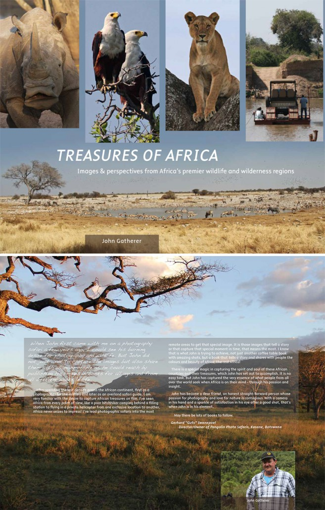 Treasures of Africa - Book