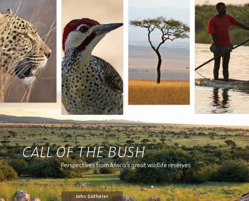 Call of the Bush - Book